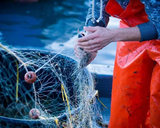 Tipi di Pesca